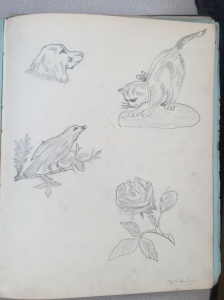 Sketch by Norman F Paulin from the collection of S Bunting